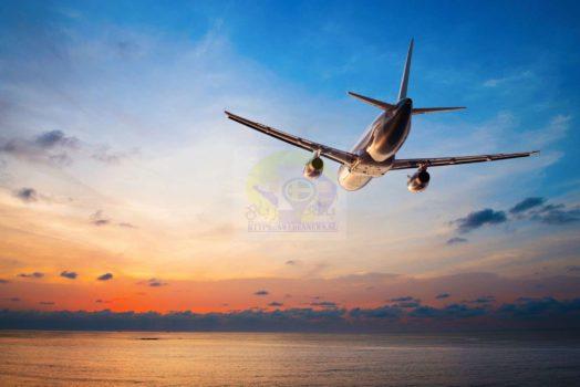 السفر والهجرة